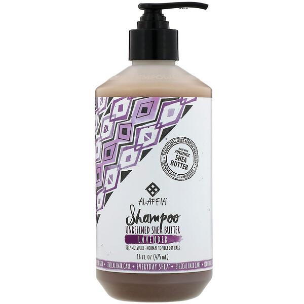 Shampoo, Lavender, 16 fl oz (475 ml)