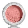 E.L.F., Mineral Blush, Rose, 0.12 oz (3.4 g) (Discontinued Item)