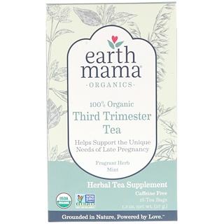 Earth Mama, 100% органический чай для беременных на позднем сроке, со вкусом травяной мяты, 16 чайных пакетов, 1,3 унции (37 г)