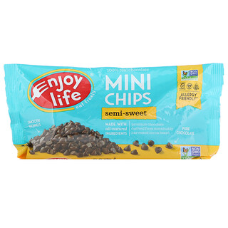 Enjoy Life Foods, رقائق صغيرة، شوكولاتة نصف محلاة، 10 أونصة (283 غ)