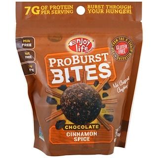 Enjoy Life Foods, ProBurst Bites, Chocolate Cinnamon Spice, 6.4 oz (180 g)