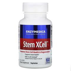 Enzymedica, Stem XCell,60 粒膠囊