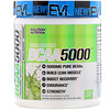 EVLution Nutrition, Ultra Premium BCAA 5000, Lemon Lime, 9.1 oz (258 g)