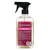 Aunt Fannie's, Ant Remedy!, Direct Spray Formula, 16.9 fl oz (500 ml)