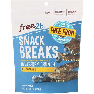 Free2B, Snack Breaks, Blueberry Crunch, Chocolate, 4.2 oz (119 g)