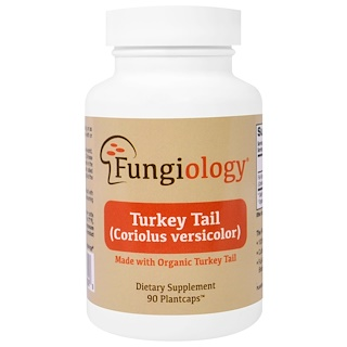 Fungiology, Turkey Tail (Coriolus Versicolor), Full-Spectrum, Certified Organic, Cellular Support, 90 Vegetarian Capsules