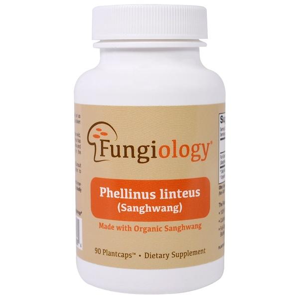 Fungiology, Phellinus Linteus полного спектра (санхван), сертифицированный органический, клеточная поддержка, 90 вегетарианских растительных капсул (Discontinued Item)
