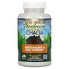 Fungi Perfecti, Chaga, 120 vegetarische Kapseln