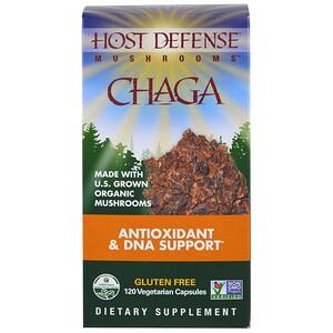 Фунги Перфекти, Chaga, 120 Vegetarian Capsules отзывы