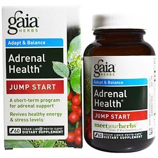 Gaia Herbs, Salud suprarrenal, Estimulante, 60 fitocápsulas líquidas veganas