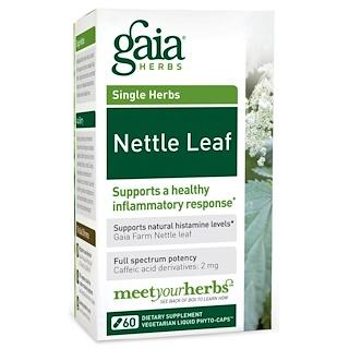 Gaia Herbs, دواء ورقة نبات القُرَّاص، 60 كبسولة نباتية سائلة