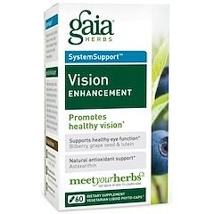 Gaia Herbs, 시스템서포트, 시력 강화, 60 베지 액체 피토-캡슐