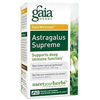 Gaia Herbs, Bem Estar Diário, Astragalus Supremo, 60 cápsulas fito líquidas vegetarianas