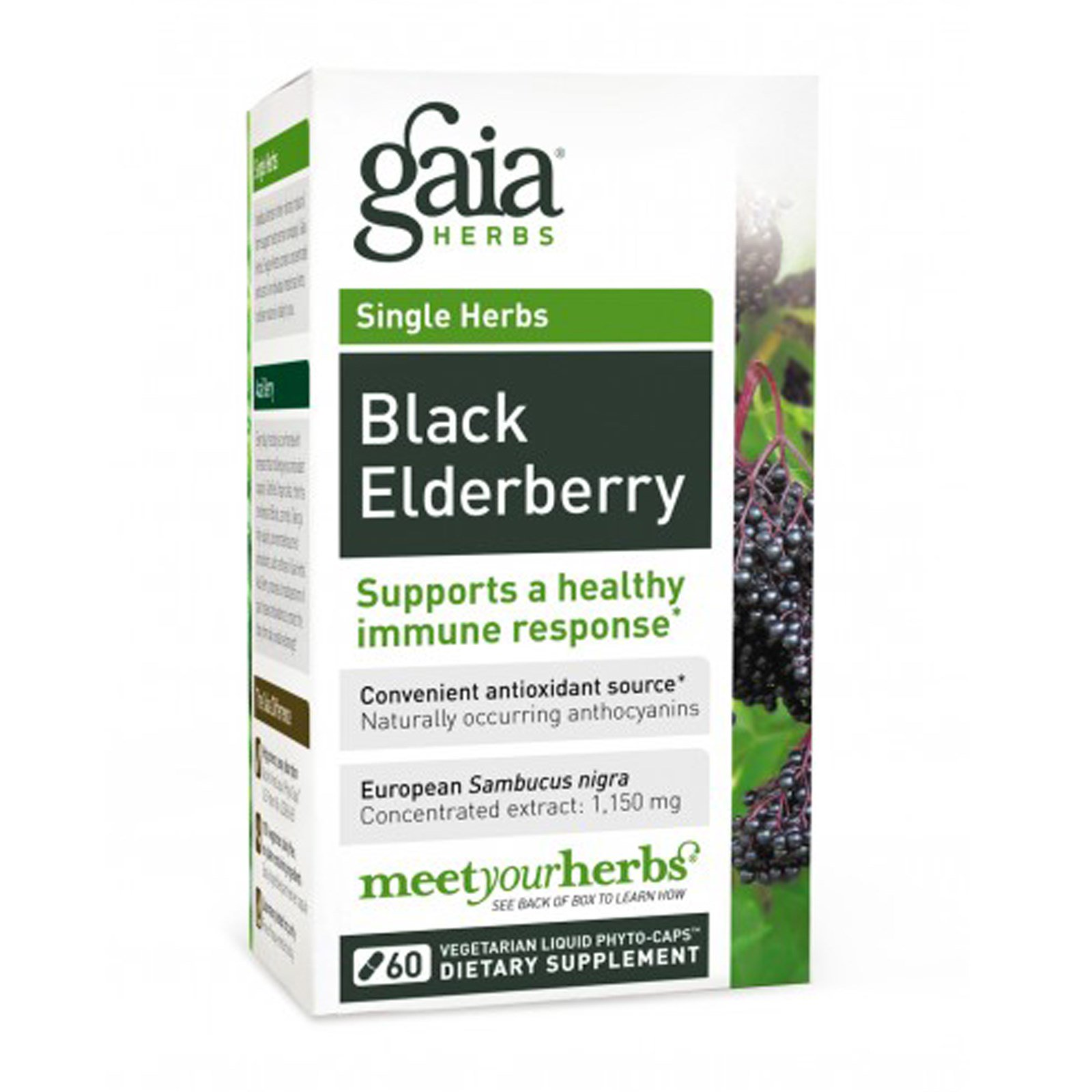 Gaia Herbs, Black Elderberry, 30 Liquid-Filled Capsules
