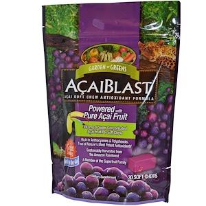 Гардэн Гринс, AcaiBlast, Acai Soft Chew Antioxidant Formula, 30 Soft Chews отзывы