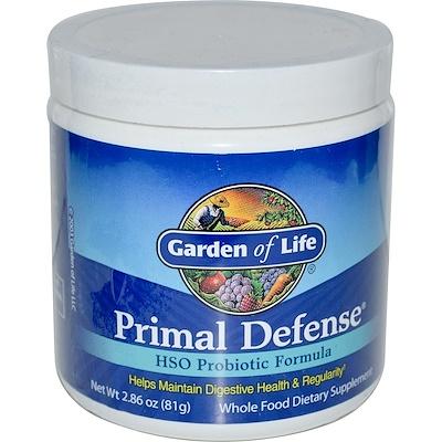 Купить Первичная защита, порошок, пробиотическая формула с HSO (гомеостатическими почвенными организмами), 2.86 унций (81 г)