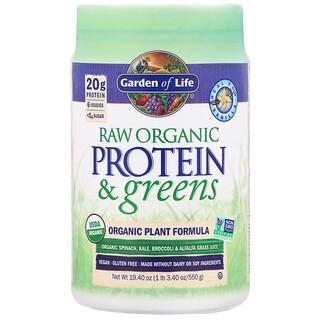 Garden of Life, بروتين وخضراوات خام، تركيبة نباتية عضوية، فانيليا، 19.40 أونصة (550 جم)
