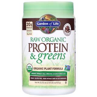 Garden of Life, RAW Protein & Greens, Organic Plant Formula, Chocolate Cacao, 21.51 oz (610 g)