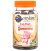 Garden of Life, MyKind Organics, Kids Multi, Organic Fruit Flavor, 120 Vegan Gummy Bears