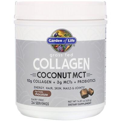 Купить Garden of Life Экологически чистый коллаген, кокосовые MCT, шоколад, 420г (14, 81унции)