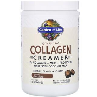 Garden of Life, Grass Fed Collagen Creamer, Chocolate, 12.06 oz (342 g)