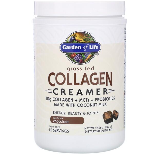 Grass Fed Collagen Creamer, Chocolate, 12.06 oz (342 g)