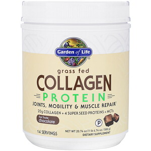 Garden of Life, Grass Fed Collagen Protein, Chocolate, 20.74 oz (588 g)