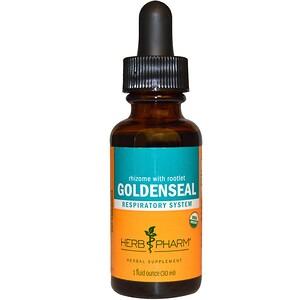 Херб Фарм, Rhizome With Rootlet Goldenseal, 1 fl oz (30 ml) отзывы