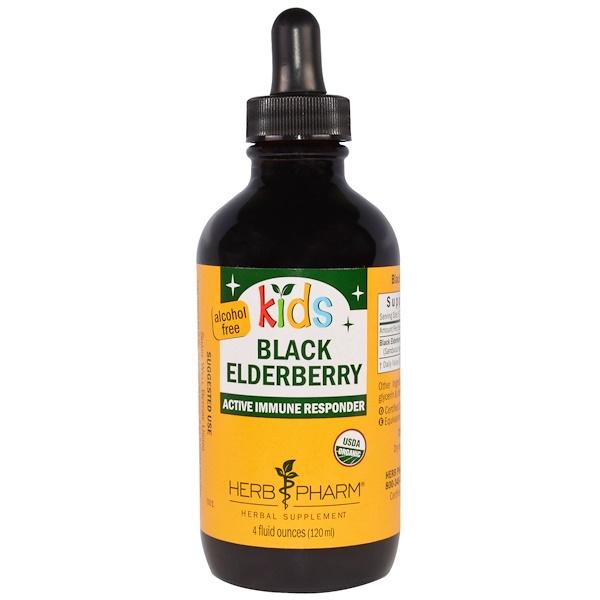 Herb Pharm, Kids Black Elderberry, Alcohol Free, 4 fl oz (120 ml) (Discontinued Item)