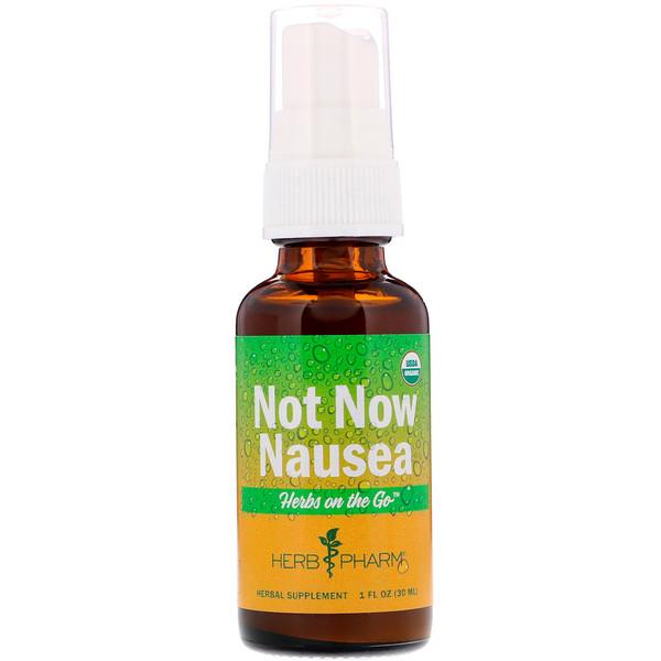Herb Pharm, Herbs on the Go، منع فوري للغثيان، 1 أوقية سائلة (30 مل) (Discontinued Item)