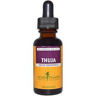 Herb Pharm, Thuja, 1 oz líquida (30 ml)