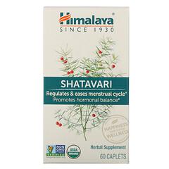 Himalaya, シャタバリ、60キャプレット