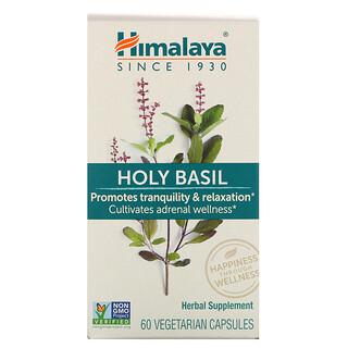 Himalaya, ホーリーバジル、植物性カプセル60粒
