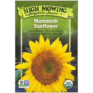 High Mowing Organic Seeds, Girasol gigante, 1/8 onzas