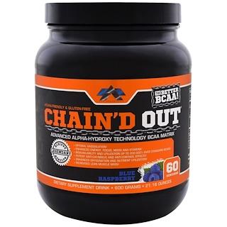 ALR Industries, Chain'D Out BCAA Matrix、ブルーラズベリー、21.16 oz (600 g)