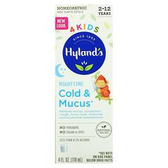 Hyland's, 4 Kids,著涼和流涕,夜間,2-12 歲,4 液量盎司(118 毫升)