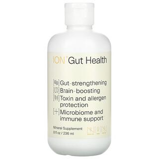 ION Biome, Gut Health, Mineral Supplement, 8 fl oz (236 ml)