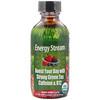 Irwin Naturals, عضوي، تيار الطاقة، بنكهة التوت المختلطة، أوقيتين سائلتين (59 مل)