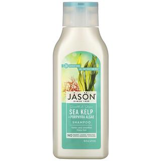 Jason Natural, Smooth & Shine Shampoo, Sea Kelp + Porphyra Algae, 16 fl oz (473 ml)