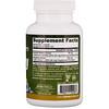 Jarrow Formulas, 빌베리 + 포도껍질 폴리페놀, 280 mg, 120 식물성 캡슐