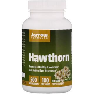 Jarrow Formulas, Espinheiro, 500 mg, 100 Cápsulas