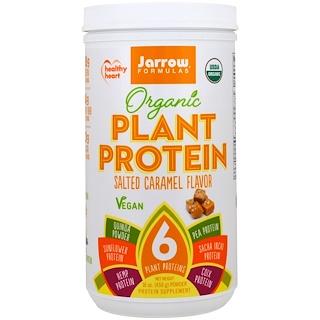 Jarrow Formulas, Organic Plant Protein, Salted Caramel Flavor , 16 oz (450 g)