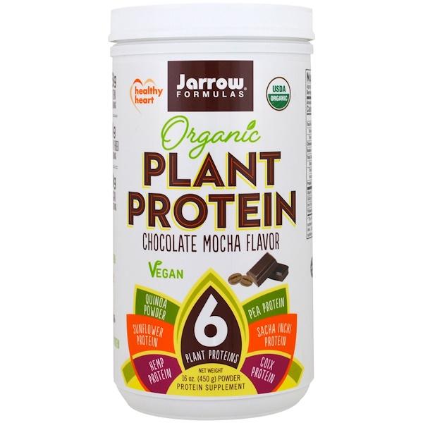 Jarrow Formulas, Organic Plant Protein, Chocolate Mocha Flavor, 16 oz (450 g) (Discontinued Item)