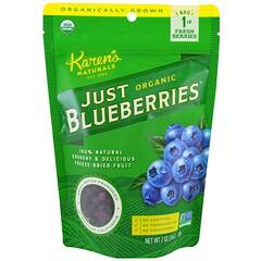 Karen's Naturals, Organic Just Blueberries, Freeze-Dried Fruit, 2 oz (56 g)