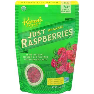 Karen's Naturals, Organic Just Raspberries, 1.5 oz (42 g)