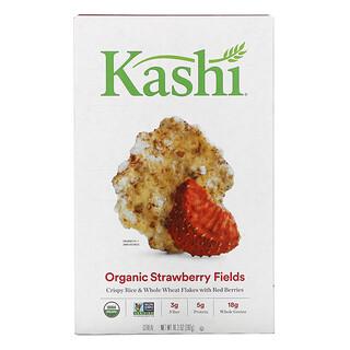 Kashi, سيريل ستروبيري فيلدز، 10.3 أونصة (292 جم)