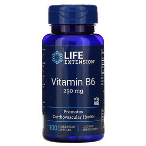 Лайф Экстэншн, Vitamin B6, 250 mg, 100 Vegetarian Capsules отзывы