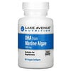 Lake Avenue Nutrition, DHA from Marine Algae, 200 mg, 60 Veggie Softgels