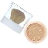 L'Oreal, True Match Mineral Foundation, SPF 19, W1-2/458 Light Ivory , .35 oz (10 g)