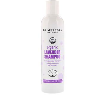 Dr. Mercola, Healthy Pets, Organic Lavender Shampoo, for Dogs, 8 fl oz (237 ml)